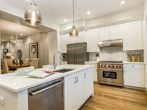 Brooklyn Brownstone Kitchen Renovation Appliances