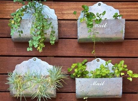cute herb gardens