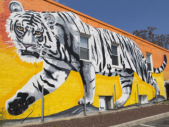 Jersey City Mural on JFK Boulevard titled Sunset Tiger by Esteban Kremen