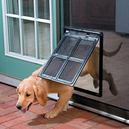 Pet-Friendly Screen Door