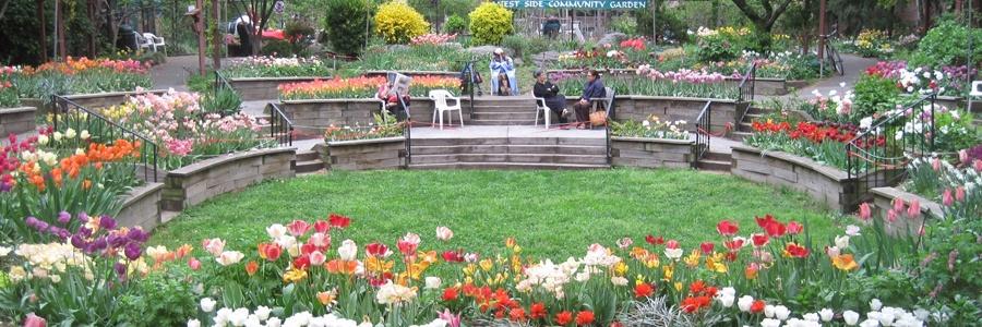 Westside Community Garden
