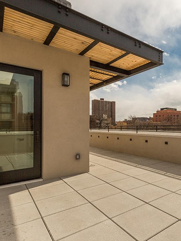 harlem roof deck