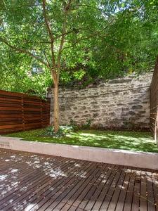 harlem backyard