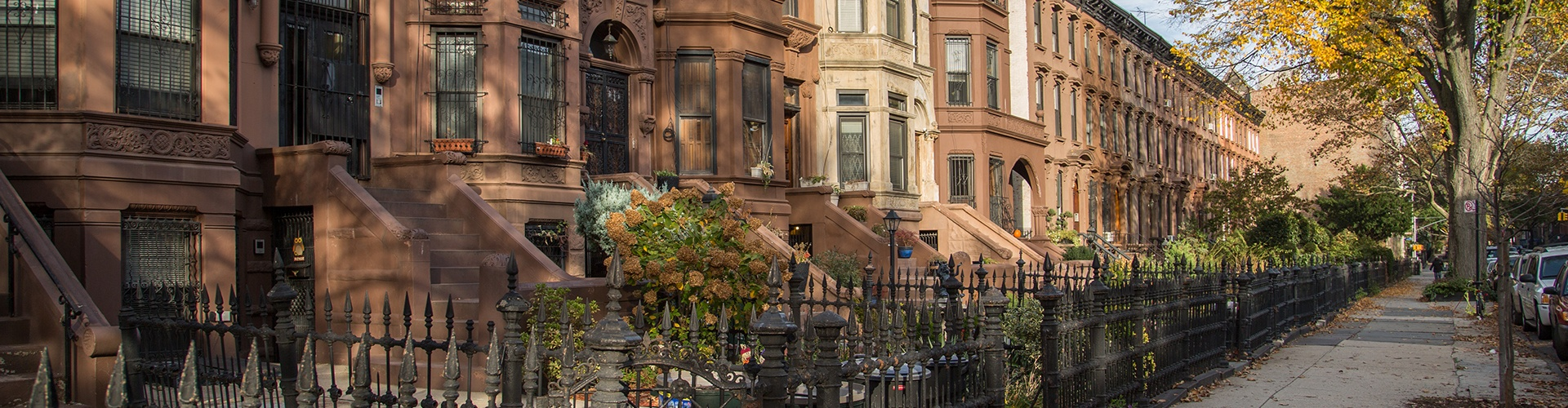 The Neighborhood: Bedford-Stuyvesant